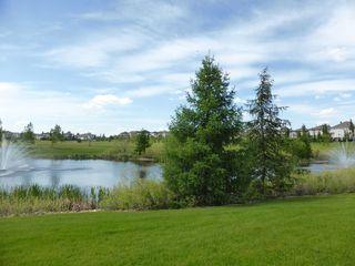 Photo 41: 1247 TREDGER Court in Edmonton: Zone 14 House for sale : MLS®# E4179975