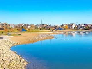 Photo 45: 142 MARQUIS Common SE in Calgary: Mahogany Detached for sale : MLS®# C4302739