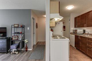 Photo 12: 102 10730 112 Street in Edmonton: Zone 08 Condo for sale : MLS®# E4203245