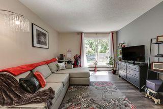 Photo 14: 102 10730 112 Street in Edmonton: Zone 08 Condo for sale : MLS®# E4203245