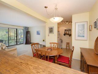 Photo 11: 316 1433 Faircliff Lane in Victoria: Vi Fairfield West Condo Apartment for sale : MLS®# 839316