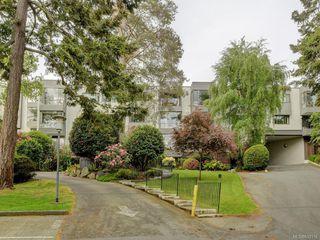 Photo 1: 316 1433 Faircliff Lane in Victoria: Vi Fairfield West Condo for sale : MLS®# 839316