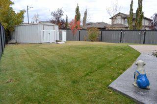 Photo 39: 16 SHORES Drive: Leduc House for sale : MLS®# E4218054