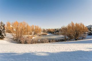 Photo 39: 2549 BELL Court in Edmonton: Zone 55 House for sale : MLS®# E4179669