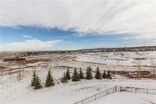 Photo 42: 160 Nolanlake View NW in Calgary: Nolan Hill Detached for sale : MLS®# C4288041