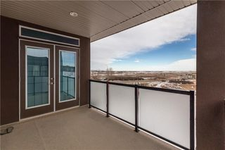 Photo 41: 160 Nolanlake View NW in Calgary: Nolan Hill Detached for sale : MLS®# C4288041