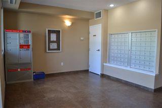 Photo 31: 415 8730 82 Avenue in Edmonton: Zone 18 Condo for sale : MLS®# E4201860