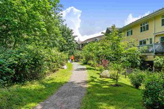 "Photo 23: 97 15168 36 Avenue in Surrey: Morgan Creek Townhouse for sale in ""Solay"" (South Surrey White Rock)  : MLS®# R2467466"