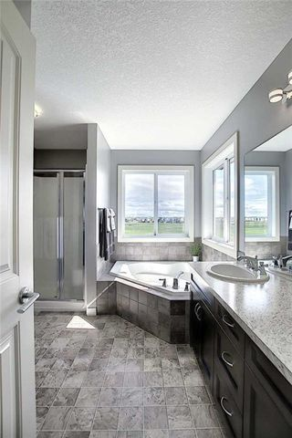 Photo 28: 382 WILLIAMSTOWN Green NW: Airdrie Detached for sale : MLS®# C4305082