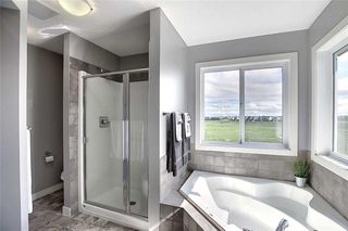 Photo 27: 382 WILLIAMSTOWN Green NW: Airdrie Detached for sale : MLS®# C4305082