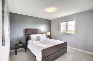 Photo 32: 382 WILLIAMSTOWN Green NW: Airdrie Detached for sale : MLS®# C4305082