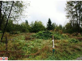 Photo 5: 5683 BAYNES Street in Abbotsford: Bradner Land for sale : MLS®# F1023266