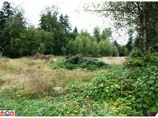 Photo 3: 5683 BAYNES Street in Abbotsford: Bradner Land for sale : MLS®# F1023266
