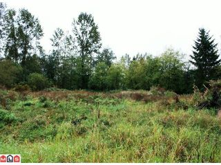 Photo 6: 5683 BAYNES Street in Abbotsford: Bradner Land for sale : MLS®# F1023266