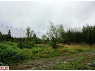 Photo 2: 5683 BAYNES Street in Abbotsford: Bradner Land for sale : MLS®# F1023266