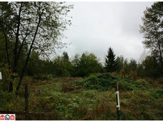 Photo 4: 5683 BAYNES Street in Abbotsford: Bradner Land for sale : MLS®# F1023266