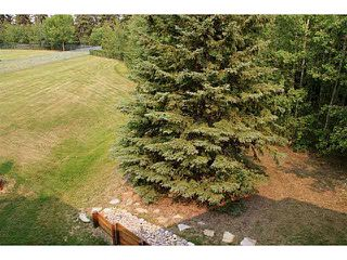 Photo 14: 671 SILVER BERRY Road in Edmonton: Zone 30 Carriage for sale : MLS®# E4173334