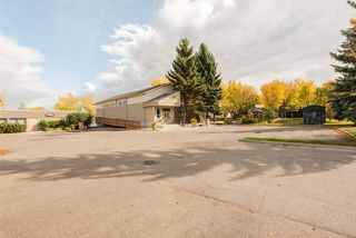 Photo 21: 5908 109 Street in Edmonton: Zone 15 House for sale : MLS®# E4175899
