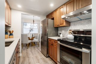 Photo 14: 205 1151 Oscar Street in VICTORIA: Vi Fairfield West Condo Apartment for sale (Victoria)  : MLS®# 419382