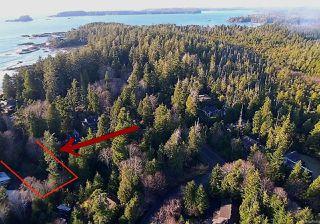 Photo 5: 1220 Lynn Rd in TOFINO: PA Tofino Land for sale (Port Alberni)  : MLS®# 841948