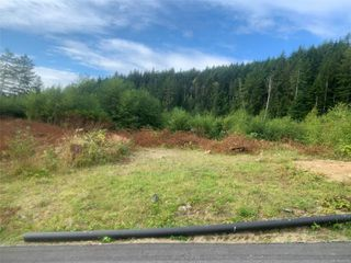 Main Photo: Lot 1 Tootouch Pl in TAHSIS: NI Tahsis/Zeballos Land for sale (North Island)  : MLS®# 844598