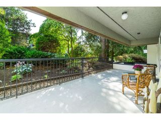 """Photo 31: 106 1351 MARTIN Street: White Rock Condo for sale in """"THE DOGWOOD"""" (South Surrey White Rock)  : MLS®# R2489161"""