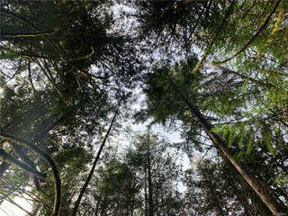 Photo 1: 657 Gowlland Rd in : Hi Western Highlands Land for sale (Highlands)  : MLS®# 858056