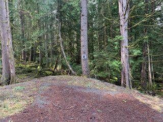 Photo 2: 657 Gowlland Rd in : Hi Western Highlands Land for sale (Highlands)  : MLS®# 858056
