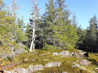 Photo 9: Lot 1 Bold Point Rd in : Isl Quadra Island Land for sale (Islands)  : MLS®# 858097