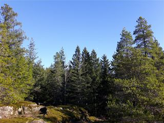 Photo 8: Lot 1 Bold Point Rd in : Isl Quadra Island Land for sale (Islands)  : MLS®# 858097