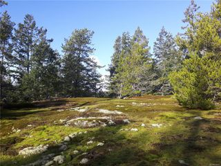Photo 18: Lot 1 Bold Point Rd in : Isl Quadra Island Land for sale (Islands)  : MLS®# 858097
