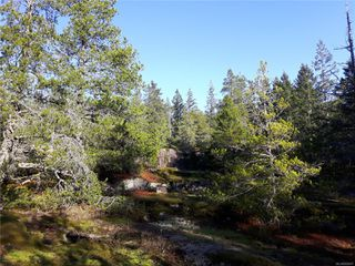Photo 3: Lot 1 Bold Point Rd in : Isl Quadra Island Land for sale (Islands)  : MLS®# 858097