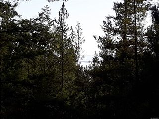 Photo 4: Lot 1 Bold Point Rd in : Isl Quadra Island Land for sale (Islands)  : MLS®# 858097