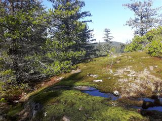 Photo 17: Lot 1 Bold Point Rd in : Isl Quadra Island Land for sale (Islands)  : MLS®# 858097