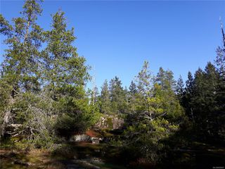 Photo 2: Lot 1 Bold Point Rd in : Isl Quadra Island Land for sale (Islands)  : MLS®# 858097