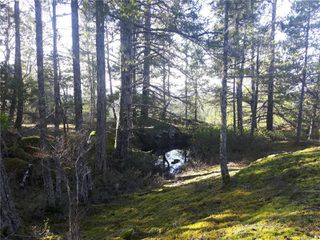 Photo 16: Lot 1 Bold Point Rd in : Isl Quadra Island Land for sale (Islands)  : MLS®# 858097