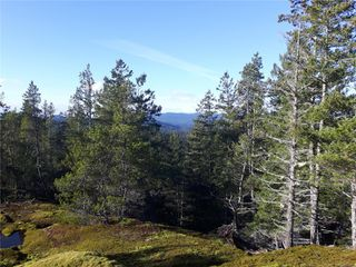 Photo 12: Lot 1 Bold Point Rd in : Isl Quadra Island Land for sale (Islands)  : MLS®# 858097