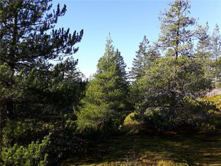 Photo 7: Lot 1 Bold Point Rd in : Isl Quadra Island Land for sale (Islands)  : MLS®# 858097