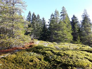 Photo 6: Lot 1 Bold Point Rd in : Isl Quadra Island Land for sale (Islands)  : MLS®# 858097