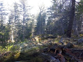Photo 11: Lot 1 Bold Point Rd in : Isl Quadra Island Land for sale (Islands)  : MLS®# 858097