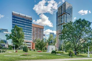 Photo 43: 514 339 13 Avenue SW in Calgary: Beltline Apartment for sale : MLS®# A1052942
