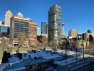 Photo 16: 514 339 13 Avenue SW in Calgary: Beltline Apartment for sale : MLS®# A1052942
