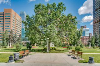 Photo 47: 514 339 13 Avenue SW in Calgary: Beltline Apartment for sale : MLS®# A1052942