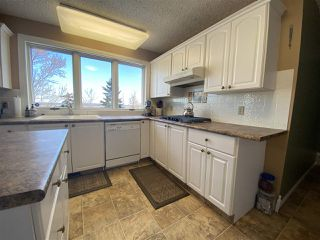 Photo 5: 60003 RR 251: Rural Westlock County House for sale : MLS®# E4223944