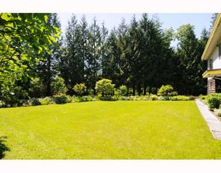 Photo 9: 24685 HALNOR Avenue in Maple_Ridge: Websters Corners House for sale (Maple Ridge)  : MLS®# V764592