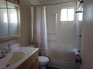 Photo 11: 4635 37 Avenue in Edmonton: Zone 29 House for sale : MLS®# E4173809