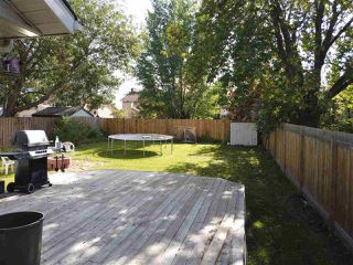 Photo 18: 4635 37 Avenue in Edmonton: Zone 29 House for sale : MLS®# E4173809