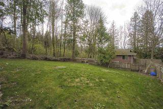 Photo 22: 10369 124A Avenue in Surrey: Cedar Hills House for sale (North Surrey)  : MLS®# R2462583