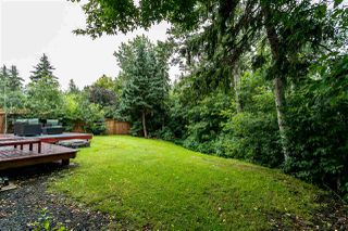 Photo 9: 14623 MACKENZIE Drive in Edmonton: Zone 10 House for sale : MLS®# E4166762