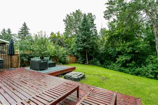 Photo 12: 14623 MACKENZIE Drive in Edmonton: Zone 10 House for sale : MLS®# E4166762